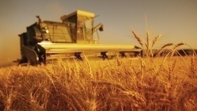 Finanțări de până la 520 de mii de lei pentru tinerii antreprenori din agricultură