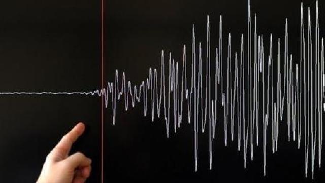 Cutremur cu magnitudinea de 4,4 grade în zona Vrancea