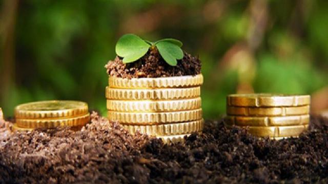 Când și cum se vor da banii din Fondul Național de Dezvoltare a Agriculturii