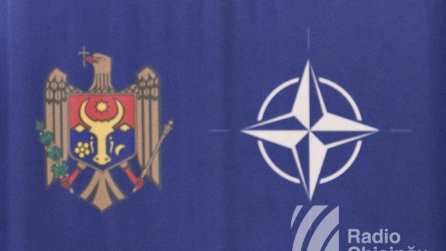 Guvernul a aprobat Planul de acțiuni individual Republica Moldova – NATO