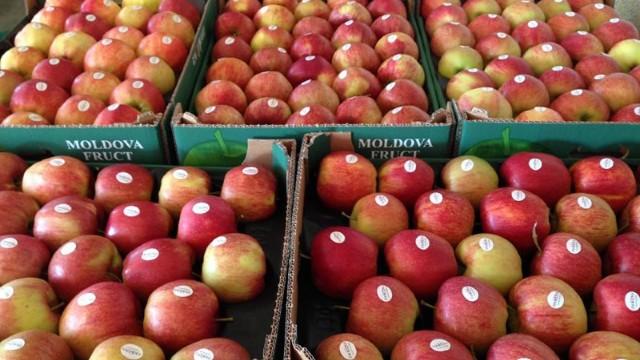 20 de tone de mere din R.Moldvoa au fost întoarse din Rusia