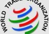 OMC anticipează un declin abrupt al comerţului mondial, cauzat de pandemia de coronavirus
