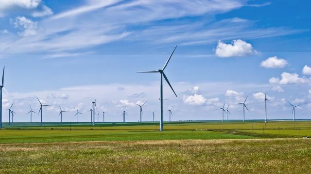 OIM: Tranziţia la economia verde ar putea duce la crearea a 24 de milioane de noi locuri de muncă