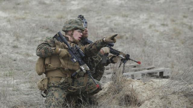 România va găzdui un exercițiu cu 30.000 de militari NATO