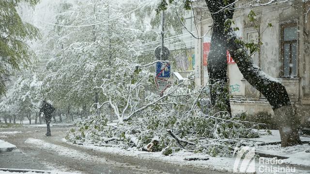 Autoritățile nu au accesat donațiile destinate lichidării consecințelor ninsorilor din aprilie