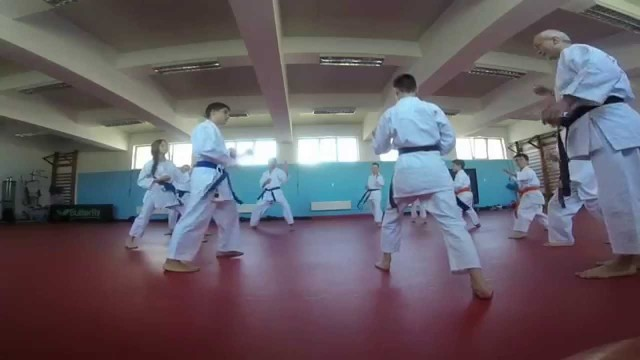 R.Moldova a cucerit cinci medalii la Campionatul Mondial de karate shotokan printre copii
