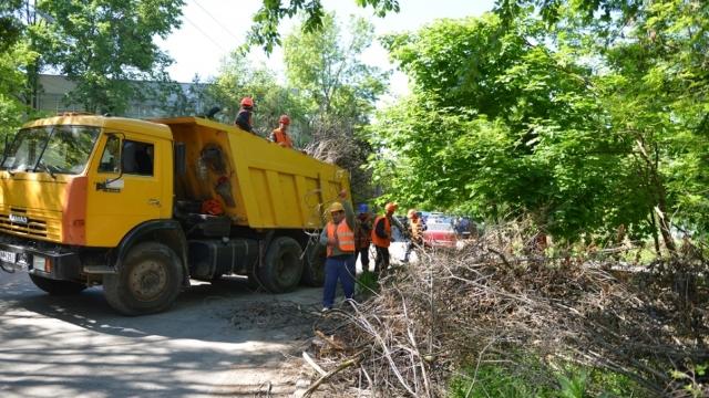 Raportul Primăriei | În 290 de curți de bloc din Chișinău, evacuarea masei lemnoase este la nivel de 10%