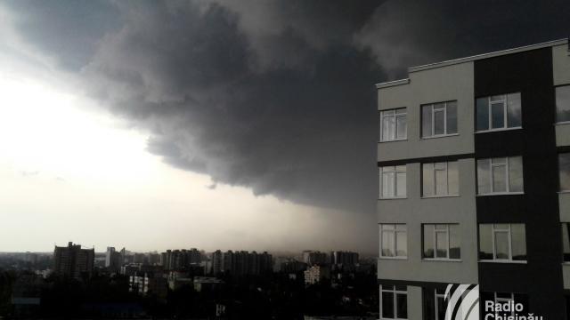 FOTO   Furtuna a doborât copaci în Chișinău și afectat circulația rutieră din Capitală