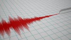 Trei cutremure s-au produs noaptea în zona seismică Vrancea, din România