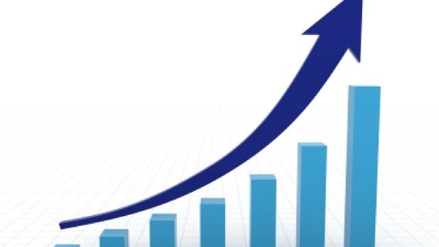 Veniturile încasate de Vamă și Fisc au înregistrat creșteri semnificative în prima jumătate a anului 2017