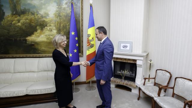 Aflată la final de mandat, ambasadoarea Germaniei, Ulrike Knotz, s-a întâlnit cu Andrian Candu