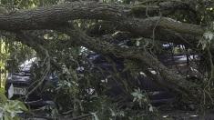 Patru persoane şi-au pierdut viaţa şi alte 36 au fost rănite în urma furtunilor violente din Polonia