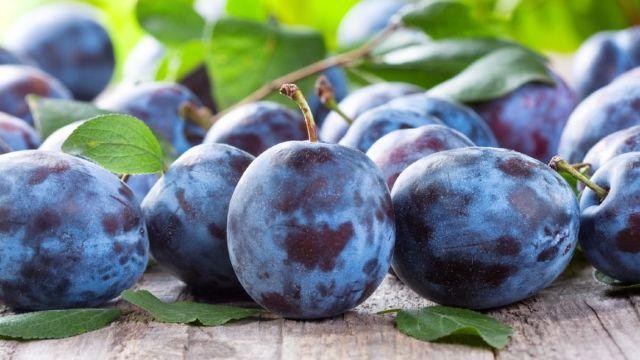 19 tone de prune din R.Moldova au fost returnate de către inspectorii Rosselhoznadzor din Rusia