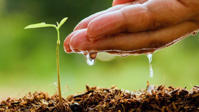 23 de milioane de dolari pentru dezvoltarea agriculturii moldovenești
