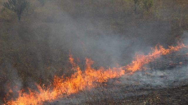 Incendiu de vegetație lângă Sociteni. Pompierii au intervenit cu trei autospeciale (FOTO)
