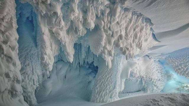 Studiu | Specii necunoscute ar trăi sub gheaţa Antarcticii
