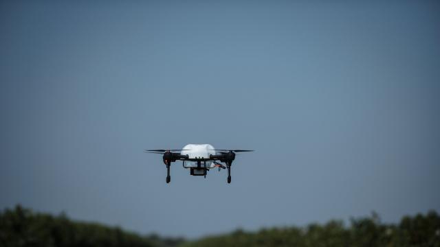 Drona care depistează bolile viței-de-vie a ajuns în Republica Moldova