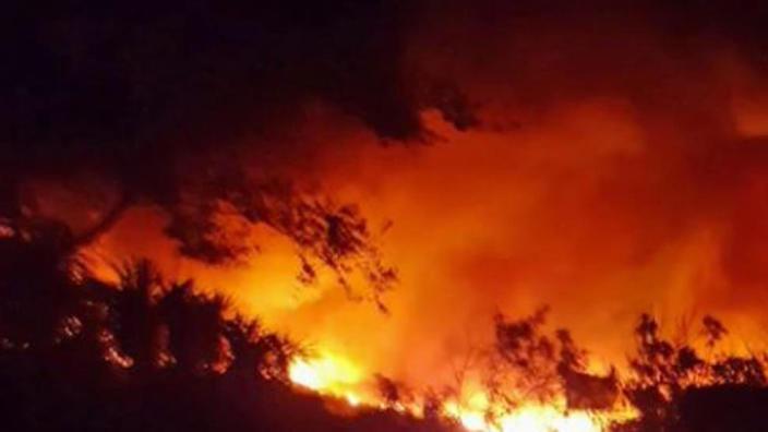 Incendiile din California - cele mai grave și cele mai scumpe din istoria SUA. Care este valoarea pretențiilor de despăgubiri