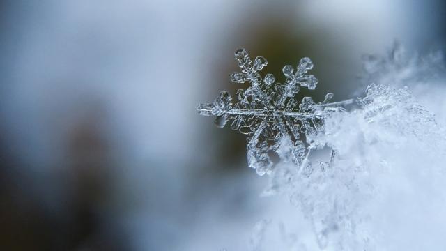Prognozele meteorologilor | Cât se vor menține ninsorile și lapovița abundente