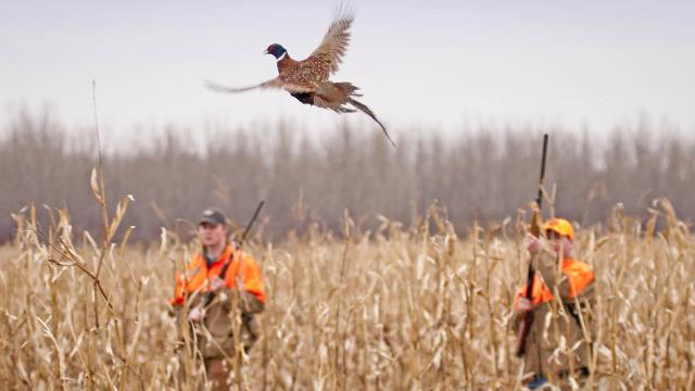 Încă o vânătoare cu final tragic. Un om a murit în raionul Sângerei