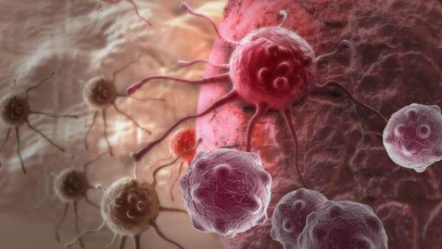 Cercetătorii americani au identificat un produs care ar putea stopa răspândirea cancerului
