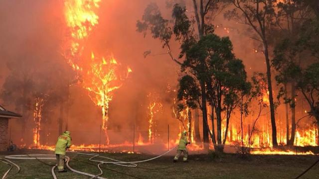 Sute de pompieri din Australia luptă cu incendiile de vegetaţie din sudul oraşului Sydney