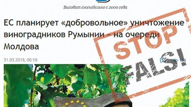 STOP FALS | UE planifică distrugerea viilor din România, urmează cele din Republica Moldova