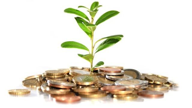 Investiţia care aduce 800 de dolari zilnic şi pe care oricine o poate face... în SUA
