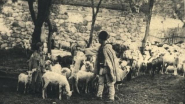Primul congres al oierilor din România, în urmă cu aproape 90 de ani