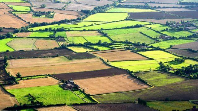 Fără investiții străine în sectorul agrar. Noul Cod funciar nu prevede liberalizarea pieţei