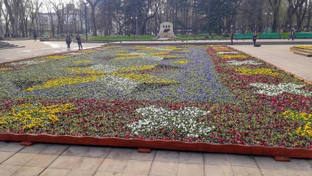 Covorul de flori din scuarul Catedralei va fi dezasamblat
