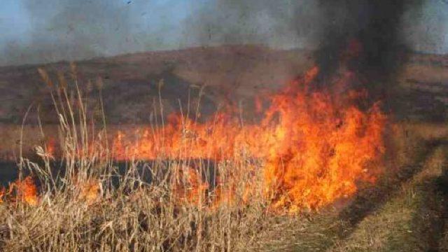 Pompierii au lichidat 17 focare de vegetație aprinsă în ultimele 24 de ore
