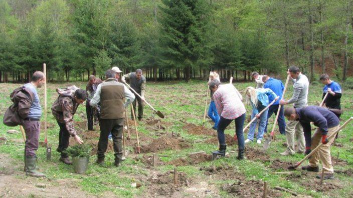 Plantare de puieţi în memoria eroilor din cele două războaie mondiale. Eveniment dedicat Centenarului Marii Uniri