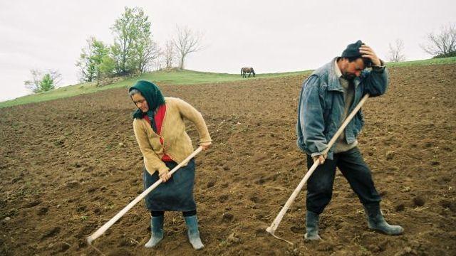 Compensații de 16 milioane de lei pentru agricultorii care nu au acces la terenurile situate după traseul Râbnița – Tiraspol