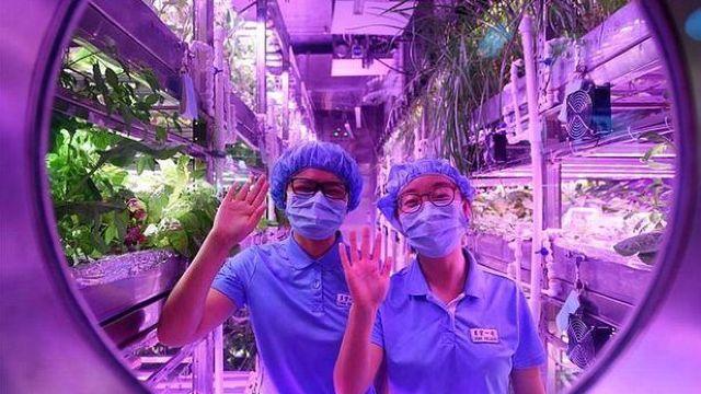 VIDEO | După 110 zile petrecute în izolare, grupul de voluntari chinezi a părăsit ''baza lunară virtuală''