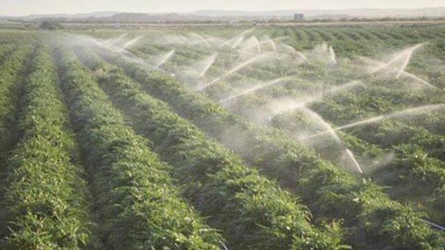 Producătorii agricoli vor avea dreptul de a-și iriga terenurile din râuri și lacuri
