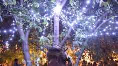 Braşov | Noaptea de Sânziene, sărbătorită în satul turistic Şirnea