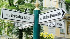 Pauza de cafea | Poveștile nevăzute de pe strada Veronica Micle din Capitală
