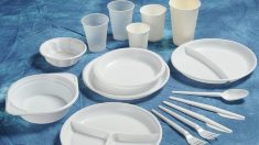 În R.Moldova ar putea fi interzisă utilizarea veselei de unică folosință din plastic. Amenzi de până la 12.000 de lei