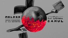 Pauza de cafea | Festivalul Internațional de Film Documentar pentru Schimbare Socială MOLDOX