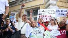 Nicolae Negru: Parlamentul European a transmis că furtul votului e mai grav decât furtul miliardului (Revista presei)