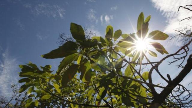 METEO | Cer variabil cu vreme frumoasă şi maxime de până la 32 de grade Celsius