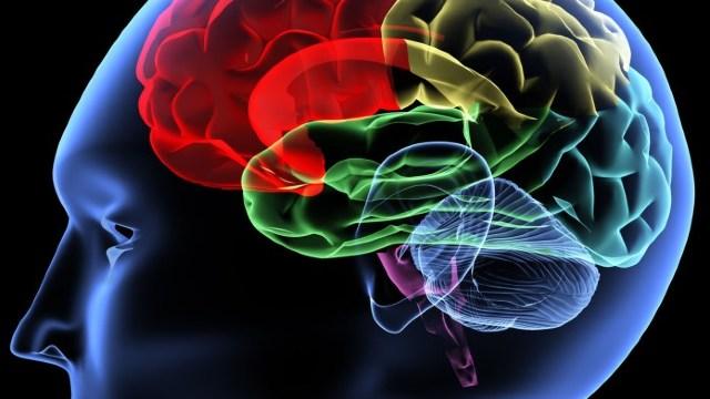 Cum se poate afla dacă starea de sănatate a creierului este bună