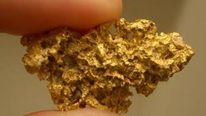 Un bărbat a descoperit o mină de aur în grădină