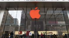 """Un australian de 16 ani a atacat Apple. Compania susţine că datele clienţilor """"nu au fost compromise"""""""