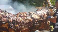 Un taur de aproape două tone a fost gătit la proţap, la Sibiu (FOTO)