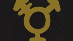 """Guvernul german a adoptat un proiect privind legalizarea celui de """"al treilea sex"""". Cum va fi formulat"""