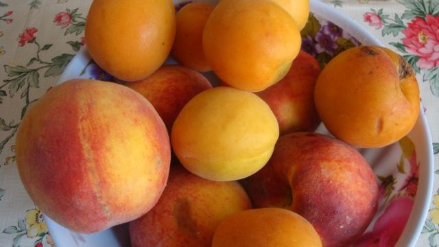 Rusia va interzice importul de fructe din Serbia și Macedonia