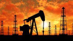 CIFRE | Producție zilnică record de petrol