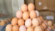 Republica Moldova a susținut prima parte a auditului pentru exportul cărnii de pasăre și ouălor în UE